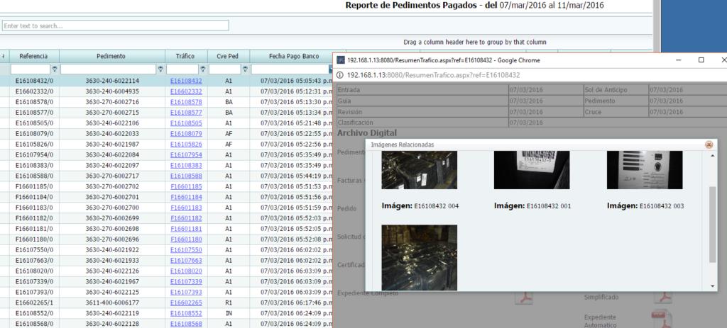 Reportes Web
